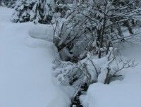 Winterfoto1.JPG