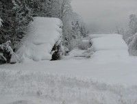 Holz_Schnee.JPG