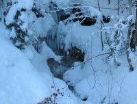 Winterfoto3.JPG