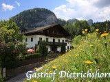 Gasthof Dietrichshorn